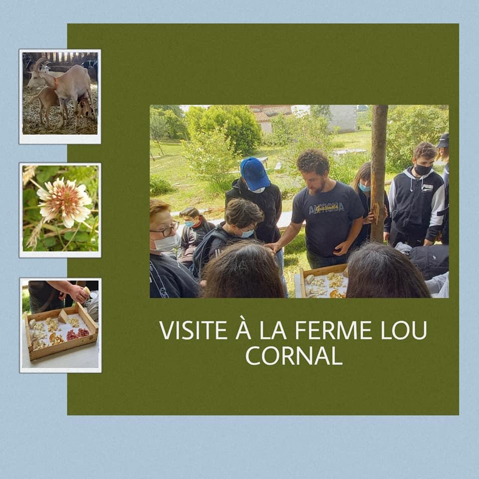 Viste d'étude à la ferme LOU CORNAL